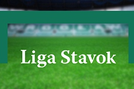 Online gambling franchise Liga Stavok: prices, description, advantages