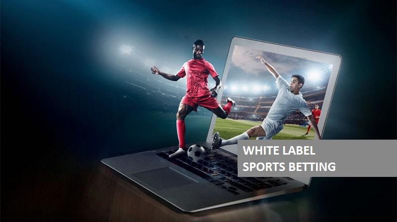 Sports betting white label sure betting calculator money